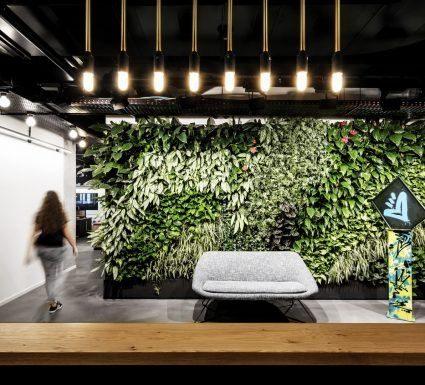 הקמת קירות ירוקים